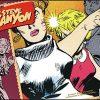 STEVE CANYON Volume 9 1963-64 Hurt